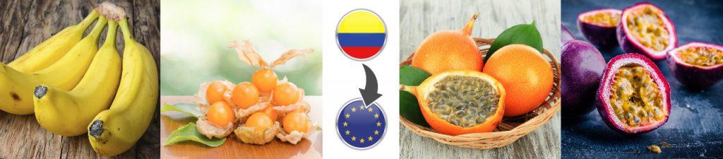 Frutas colombianas como protagonistas en la Unión Europea